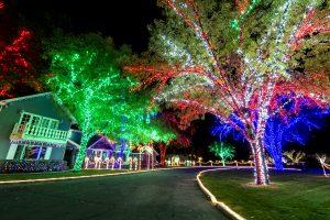 Christmas_Lights_4