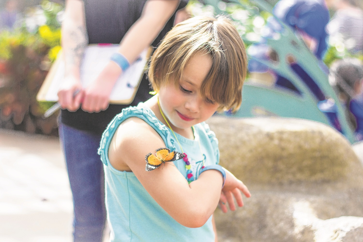 A spring-break visit to Butterfly Wonderland offered youngsters a chance to get up close and personal with nature's winged beauty. (Wrangler News/Alex J. Walker)
