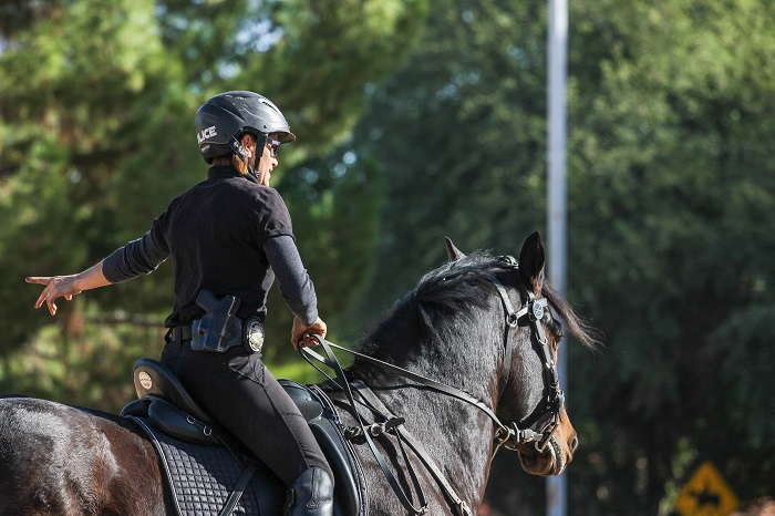 Tempe mounted police unit visited Buena Vista Ranchos, where residents offered their community arena for training. (Wrangler News Photo by Alex J. Walker)