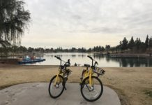 Ofo yellow bikes