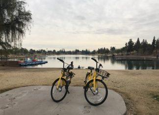 Ofo yellow bikes